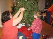ben and momy tree